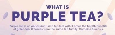 What is Purple Tea?